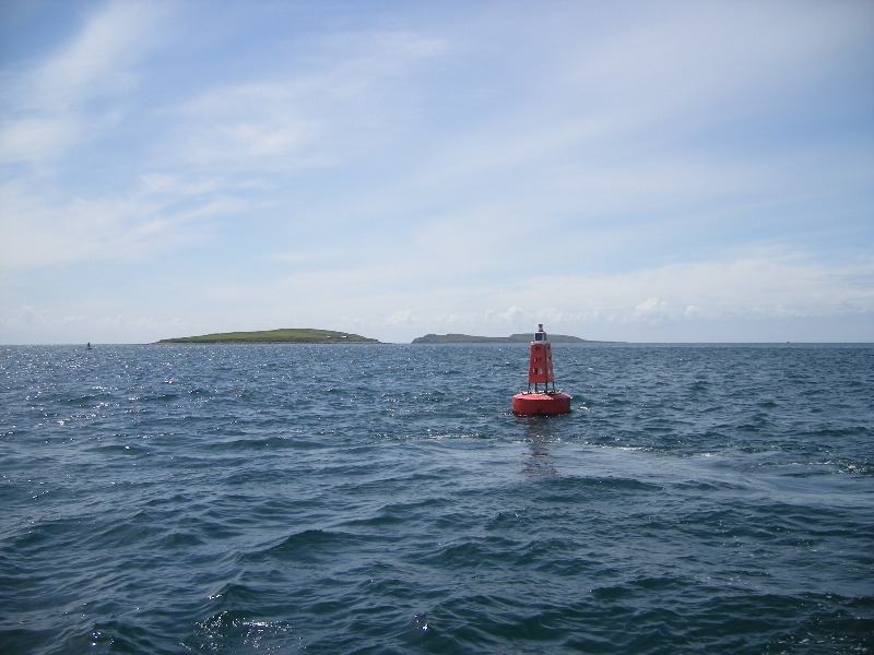 St Patricks Bridge Buoys